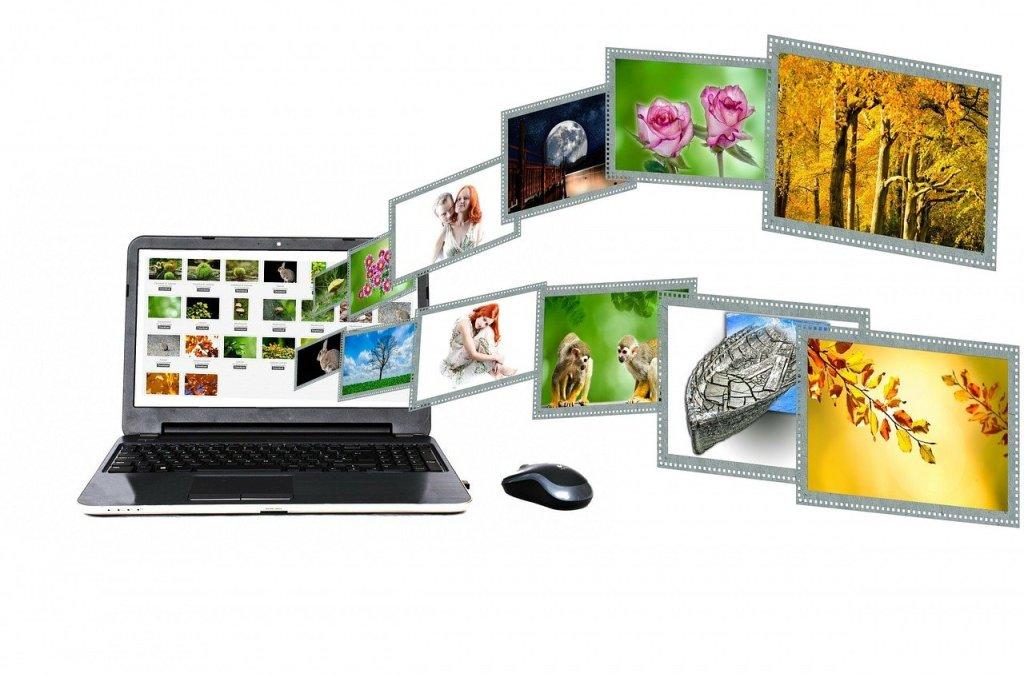 Un contenu web se présent sous différente forme: article, études...Photo de Erik Mclean sur Pexels.com